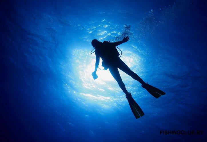 Подводные браконьеры