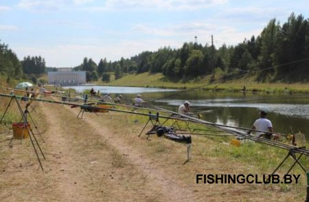 шуруповерт для рыбалки какой